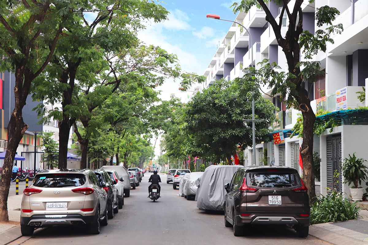 Hai dãy ô tô đỗ dưới lòng đường, dưới tán cây xanh
