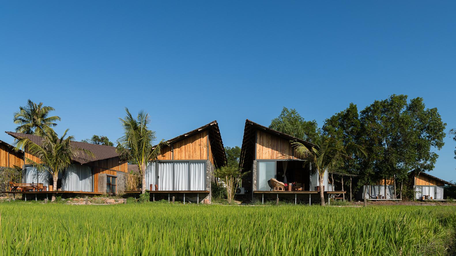 resort nằm giữa cánh đồng lúa