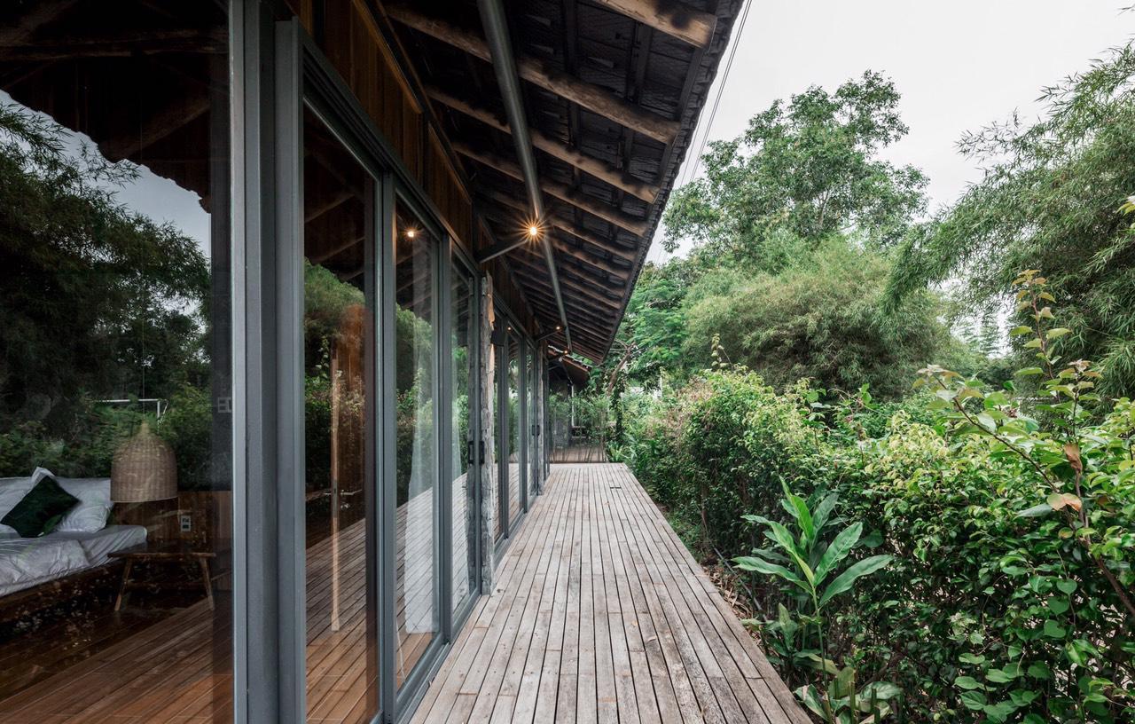 ngôi nhà mở rộng tầm nhìn ra cây cối xung quanh