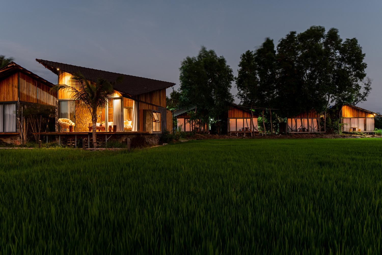 các bungalow cạnh cánh đồng lúa
