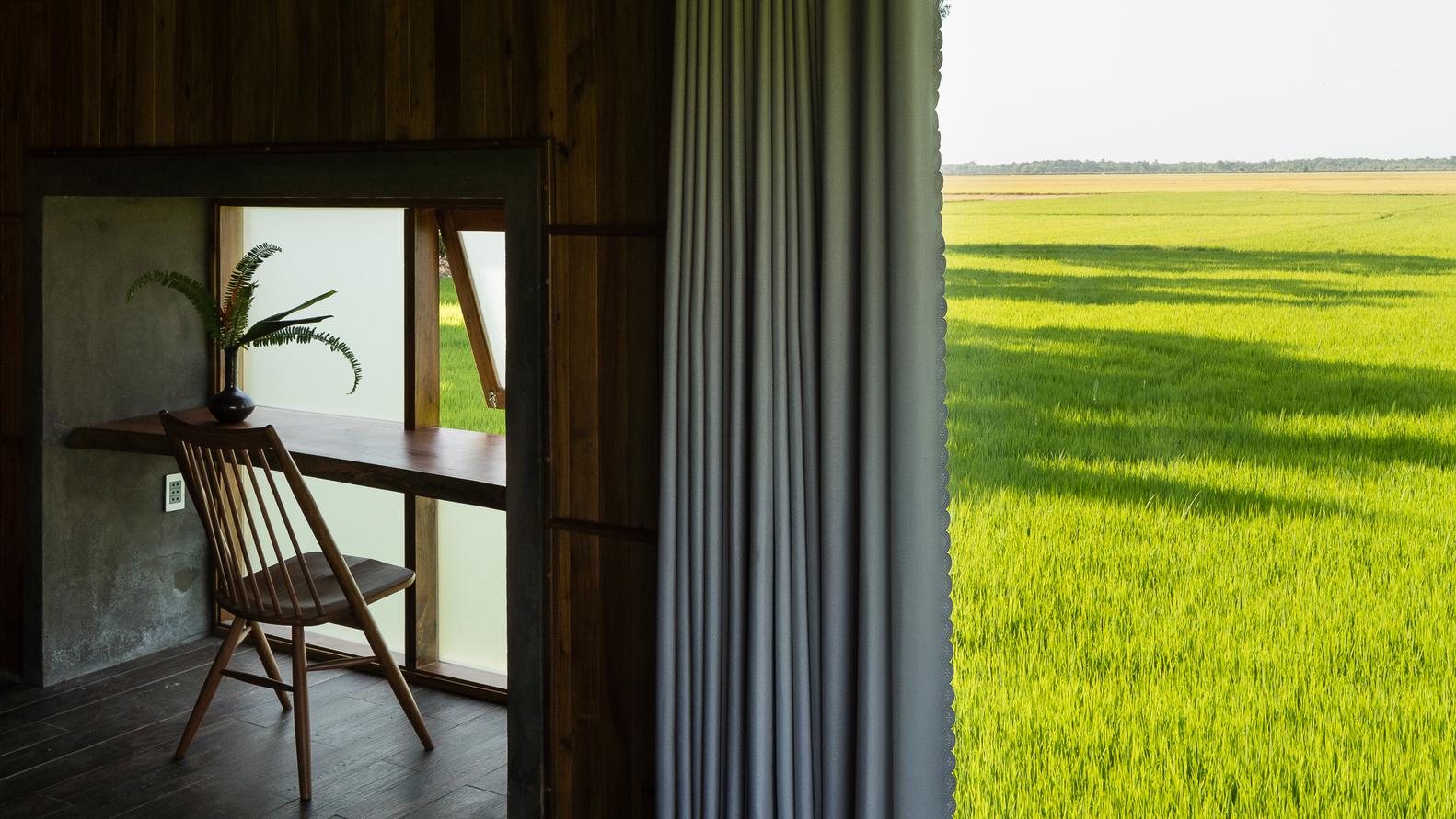 tầm nhìn ra phía cánh đồng xanh rì