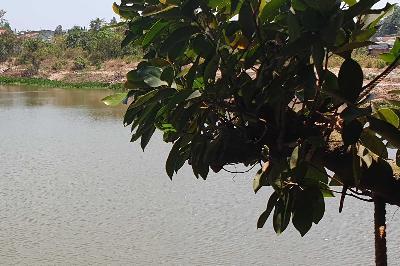 Dự án nằm bên mặt hồ tĩnh lặng