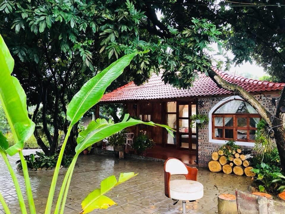 Nhà vườn mái cong, giữa nhiều cây cối, phía trước là sân gạch.