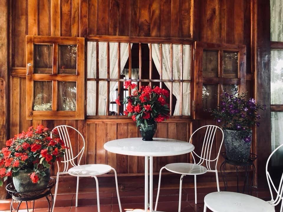 Tường gỗ, khung cửa sổ, bàn trà và nhiều hoa trong một homestay