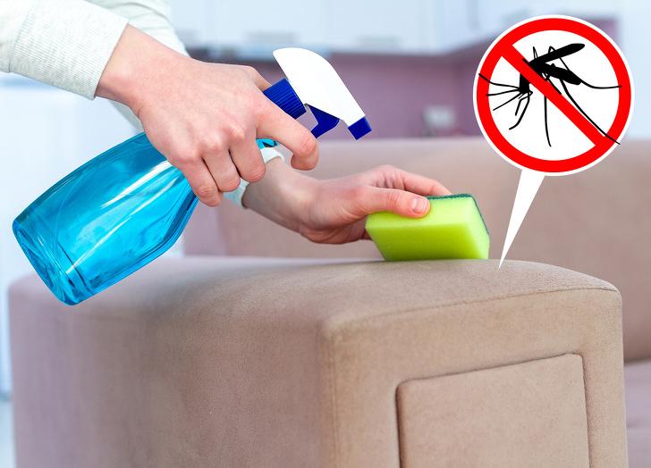 Xịt dung dịch đuổi muỗi lên bàn ghế
