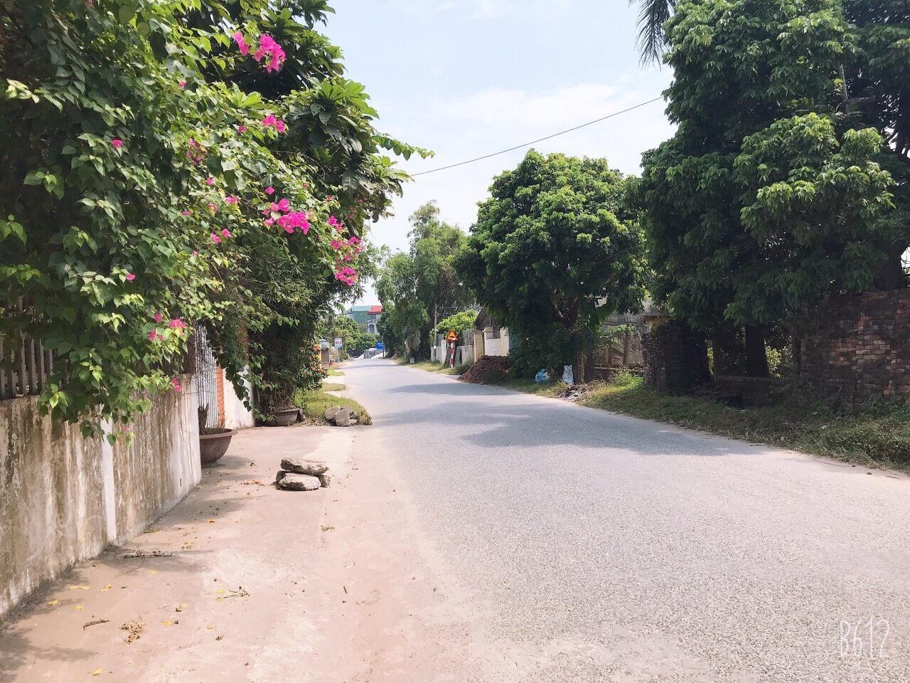 Đường nhiều cây cối tại một khu vực có dự án bất động sản Hưng Yên.