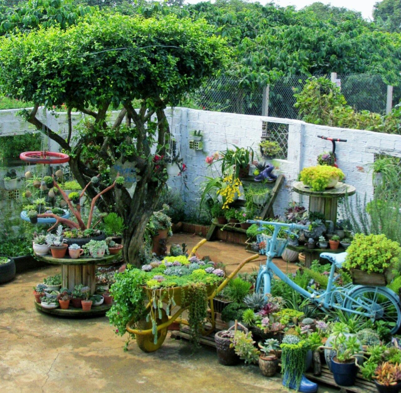 Vườn tiểu cảnh sen đá và đồ tái chế trang trí