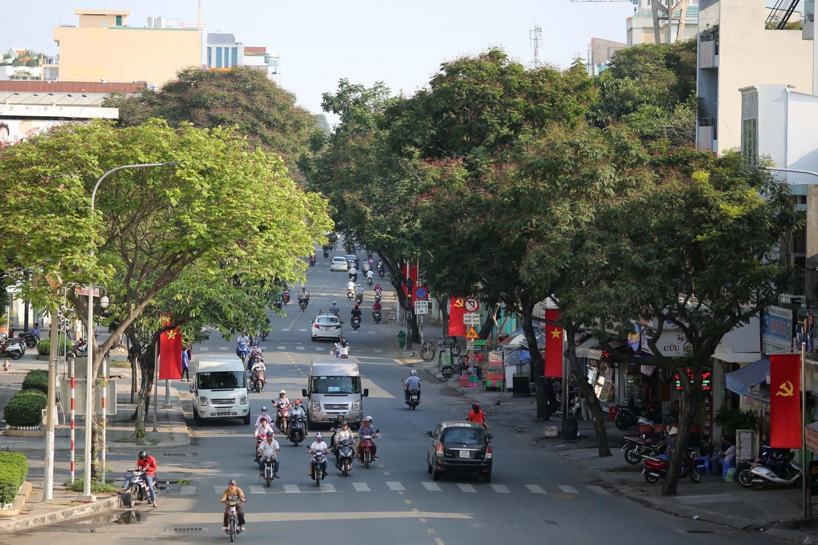 con phố TP.HCM có xe cộ đang đi lại, xung quanh có nhiều cây xanh