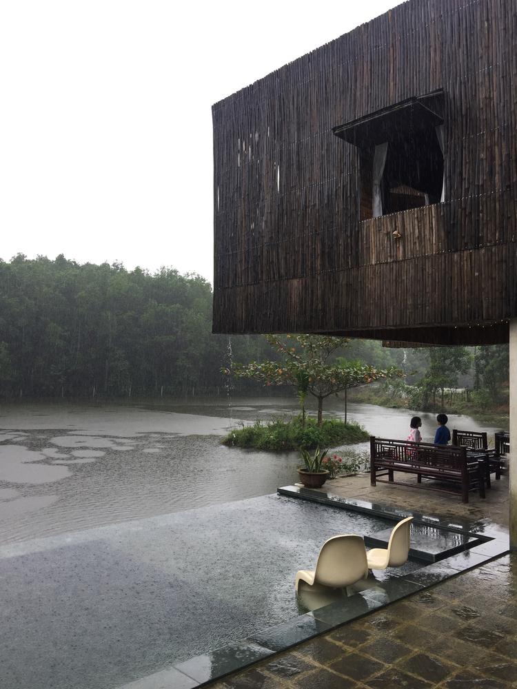 Từ ngôi nhà nhìn ra đồi thông và hồ nước vào một ngày mưa