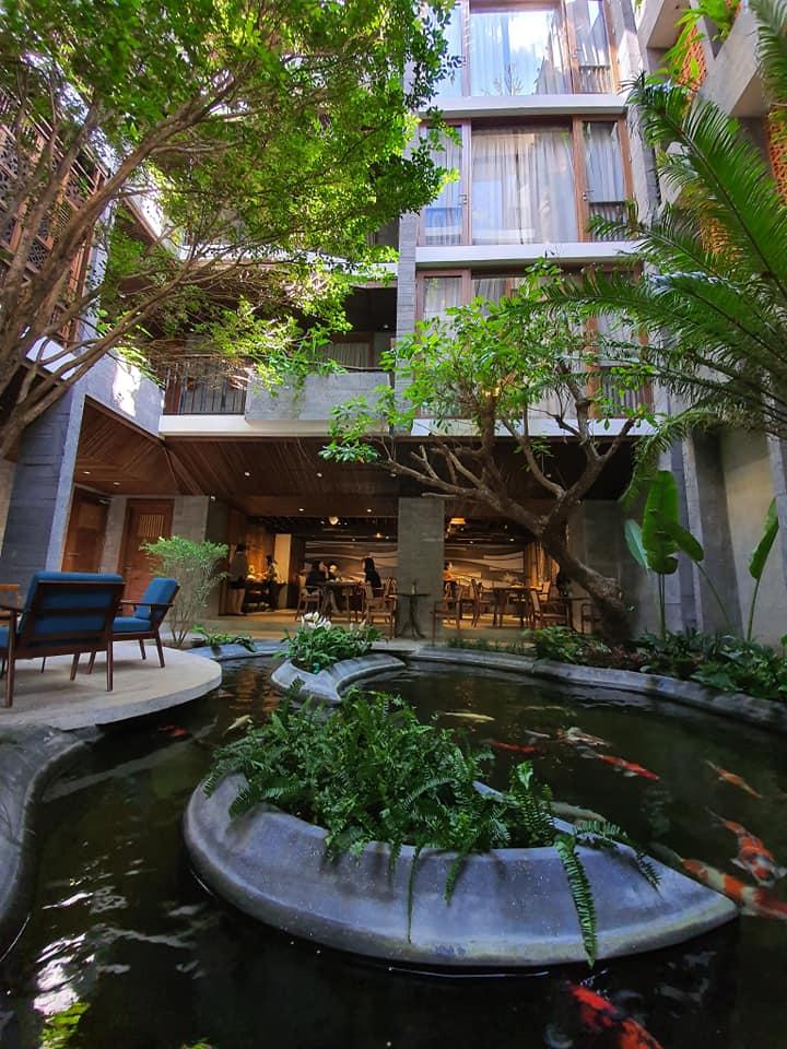Khuôn viên khách sạn nhiều cây xanh