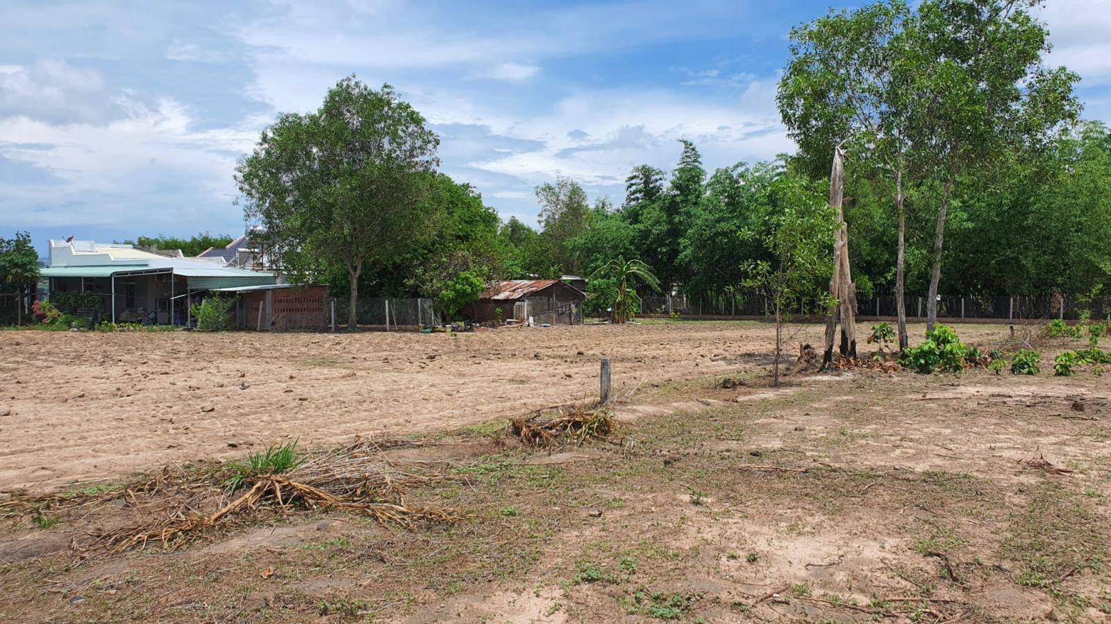 Một khu đất trống tại khu vực Long Hòa, Cần Giờ