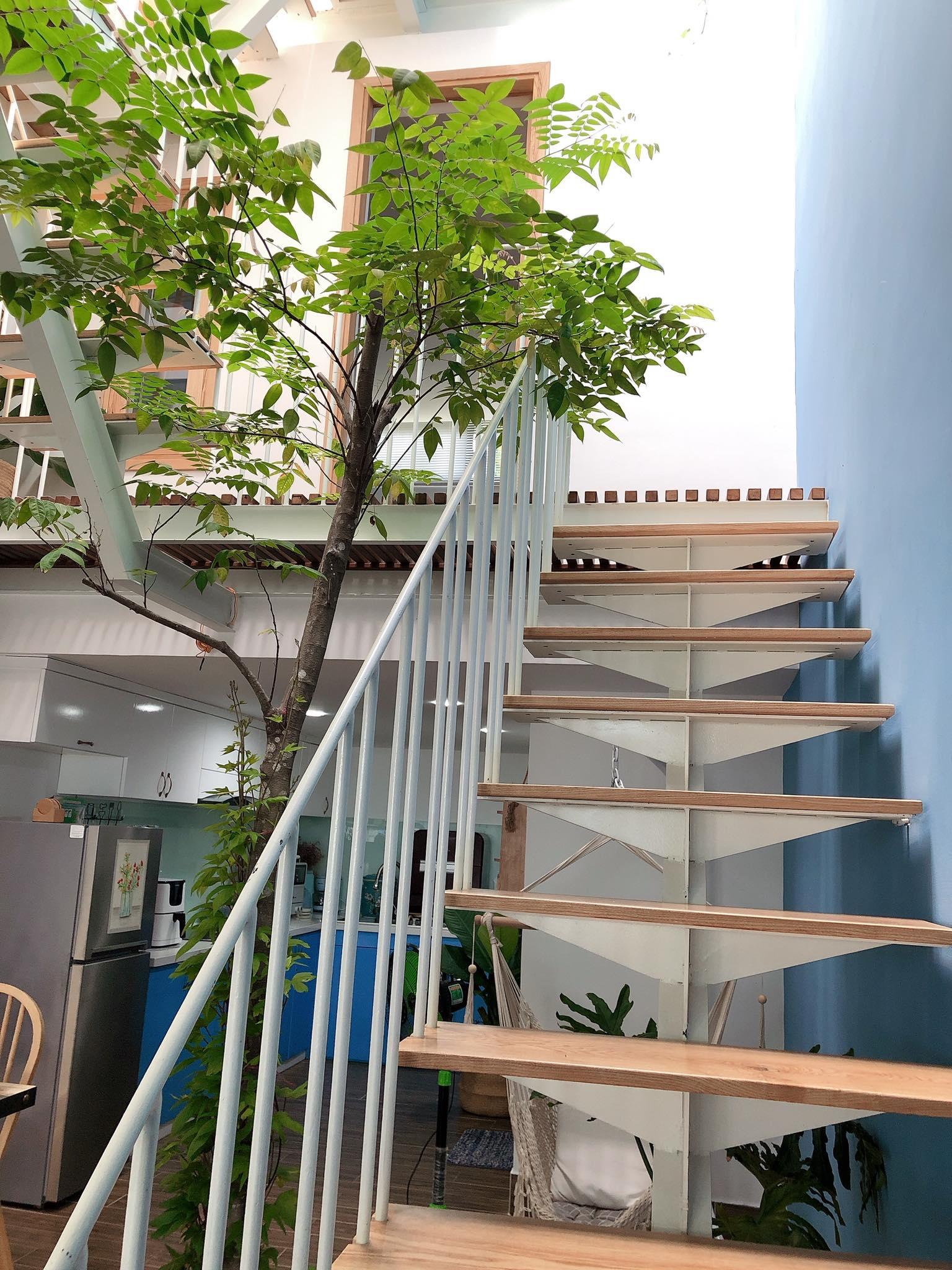 Cầu thang, giếng trời và cây xanh