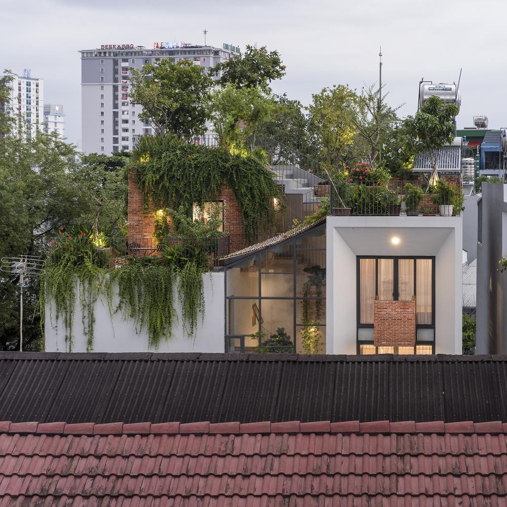 Nhà lệch tầng có vườn cây trên mái
