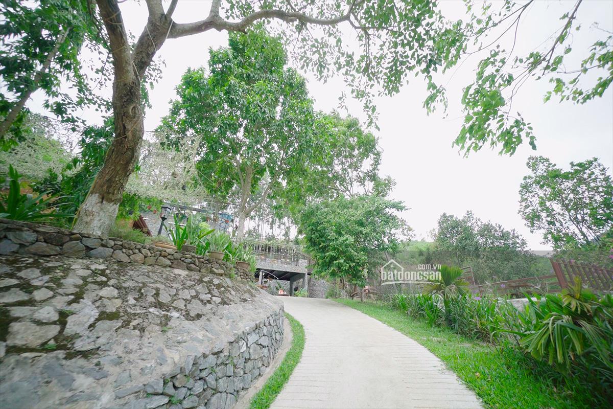 Lối vào ngôi nhà trên đồi