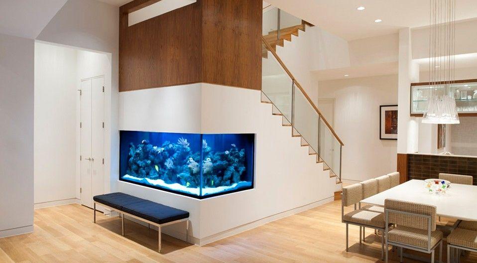 Thiết kế bể cá ở gầm cầu thang
