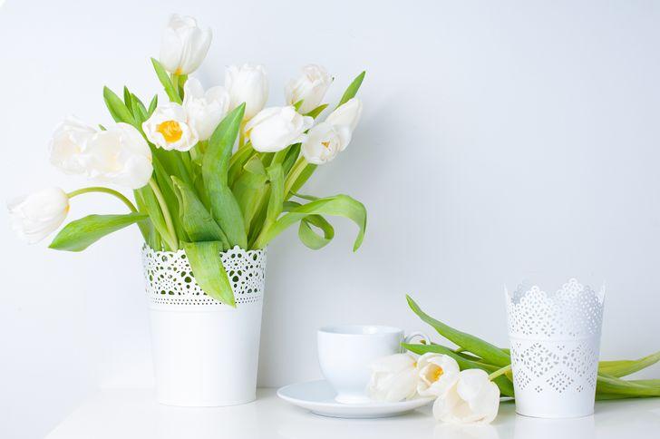 Cắm hoa theo phong cách đơn sắc