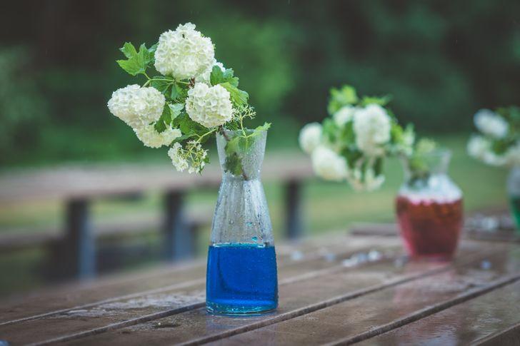 Cắm hoa tươi trong bình thủy tinh pha nước màu