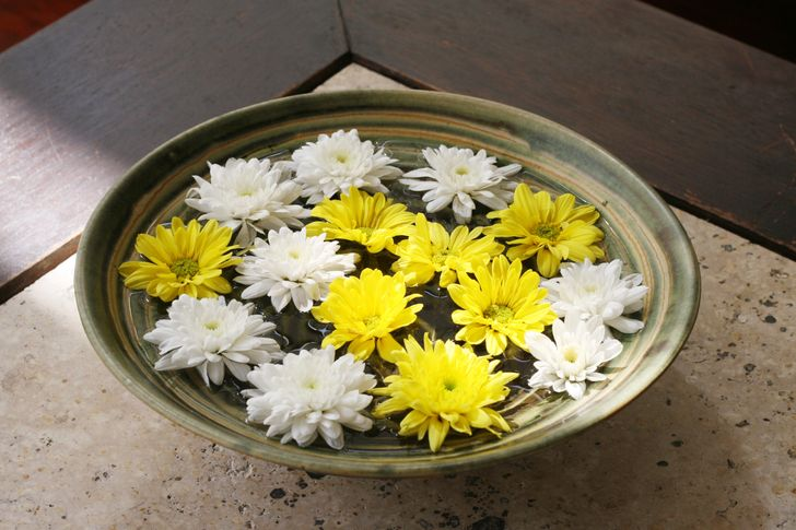 Cắm hoa trong bát nước