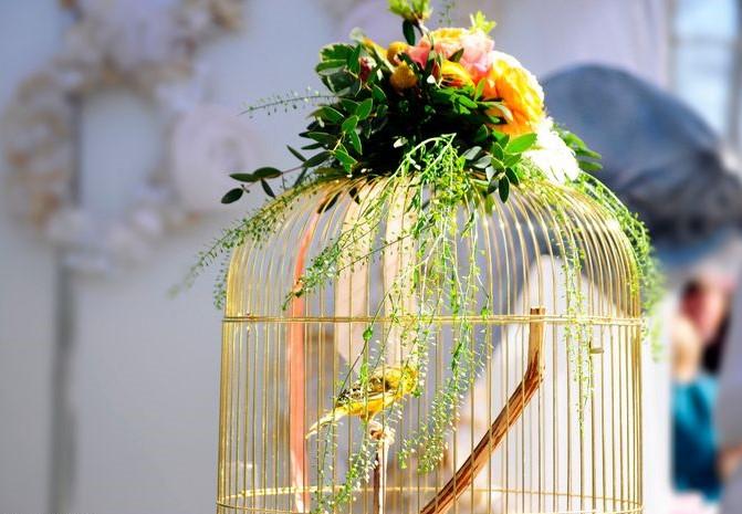 Cắm hoa trên lồng chim