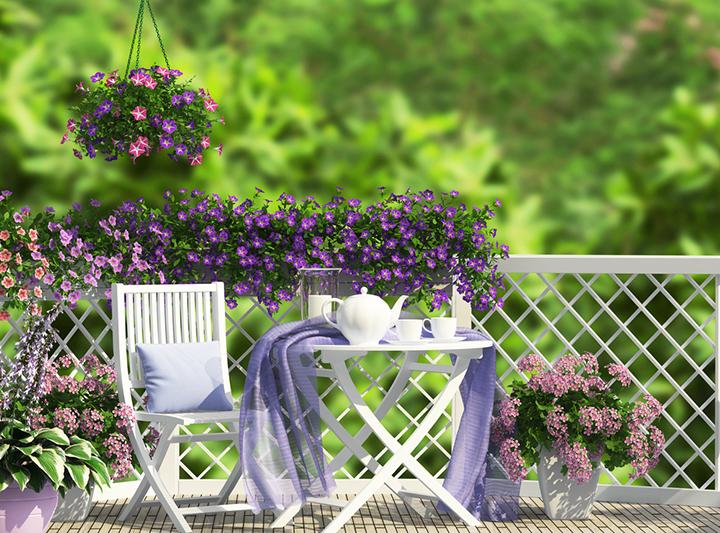 trồng hoa ở ban công đẹp
