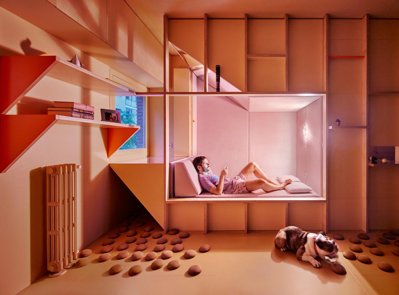 """Một chàng trai và chó cưng chia sẻ không gian sống được thiết kế từ những vật thể """"lai"""" giữa kiến trúc và nội thất."""