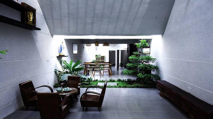 Trồng cây tại khu vực giếng trời tạo mảng xanh hút mắt cho không gian nhà ở.