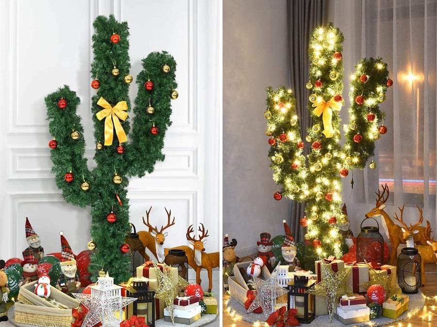 Cây xương rồng thay thế cây thông Noel