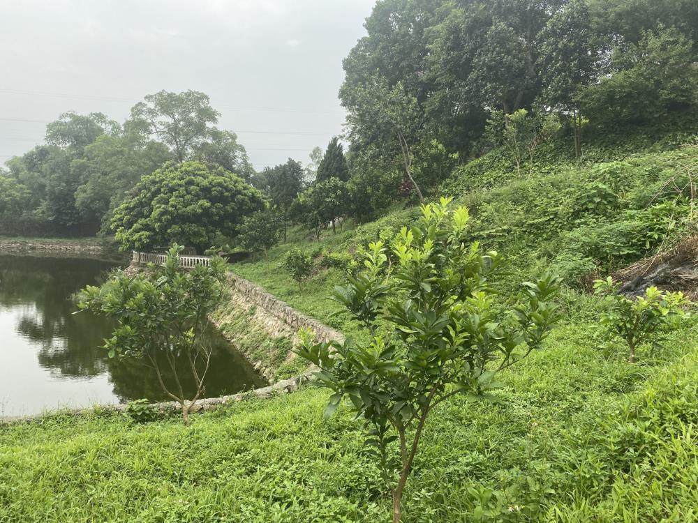 hình ảnh một khu đất ở Hòa Bình