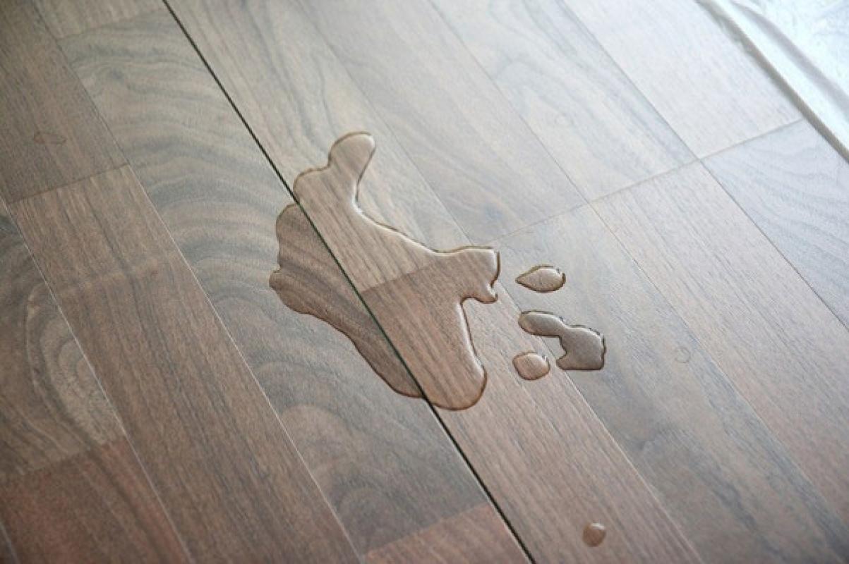 Làm đổ nước lên sàn gỗ
