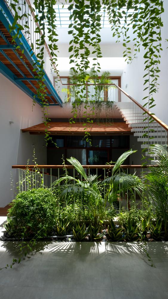 vườn bậc thang trong nhà