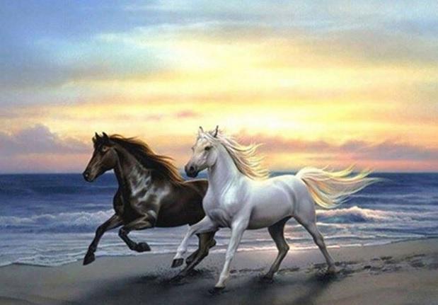 tranh ngựa phi