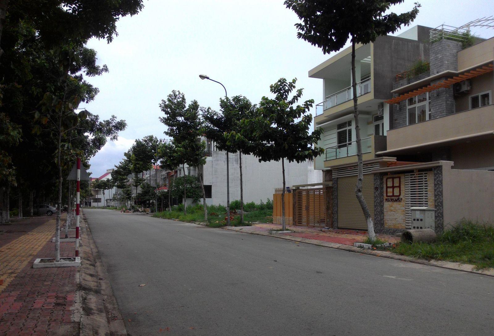 nhà đất nằm tại mặt đường lớn có hàng cây