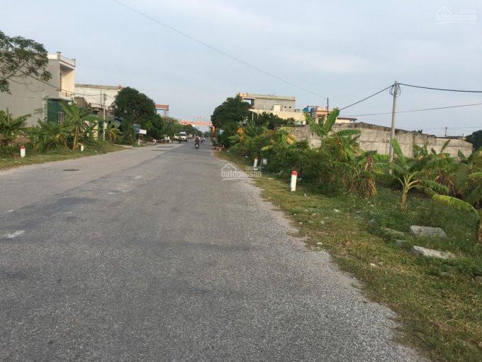 đường đi lớn, hai bên có nhiều cây cối