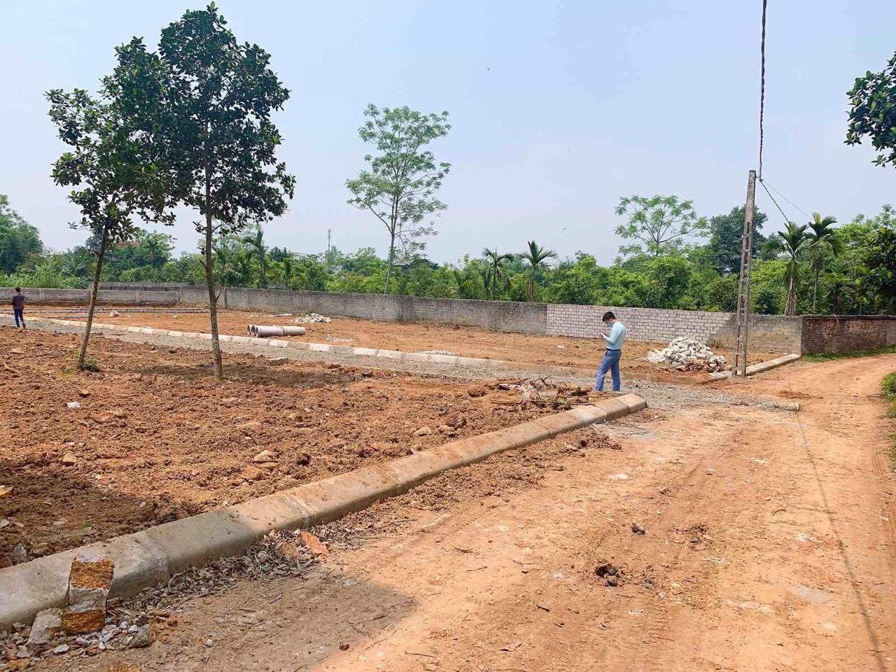 Đất phân lô giá rẻ ở vùng quê