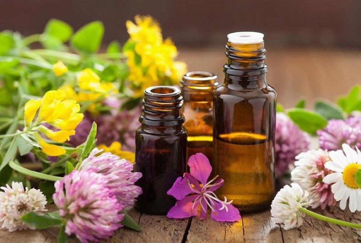 Sử dụng tinh dầu đẩy lùi mùi ẩm mốc khi nhà nồm