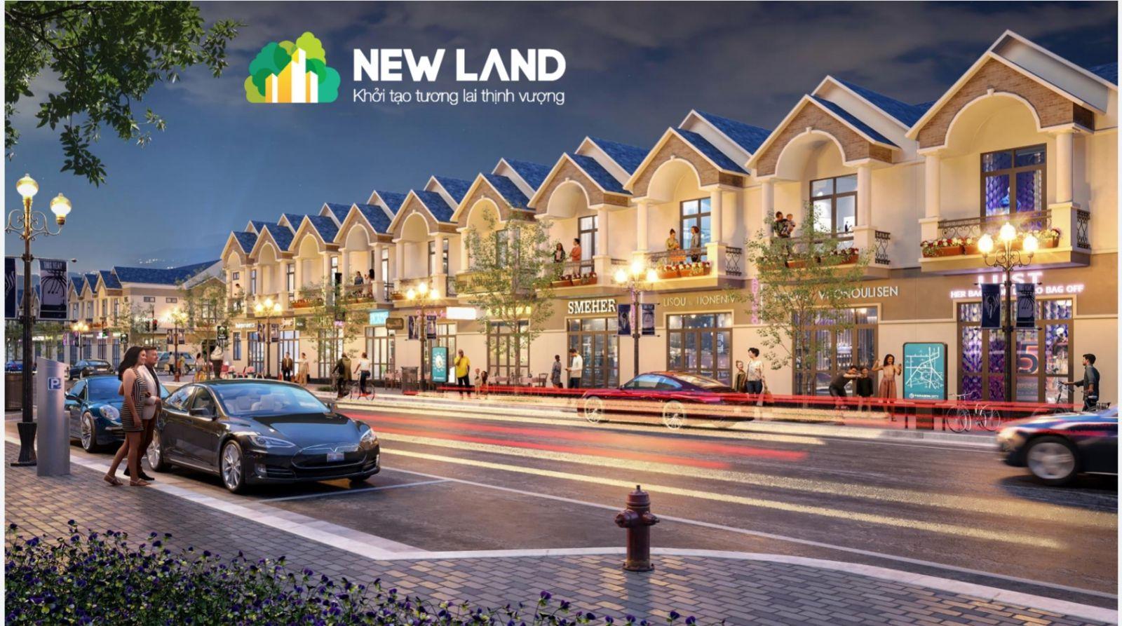 Phối cảnh dự án Khu nhà ở Bàu Bàng (New Land)