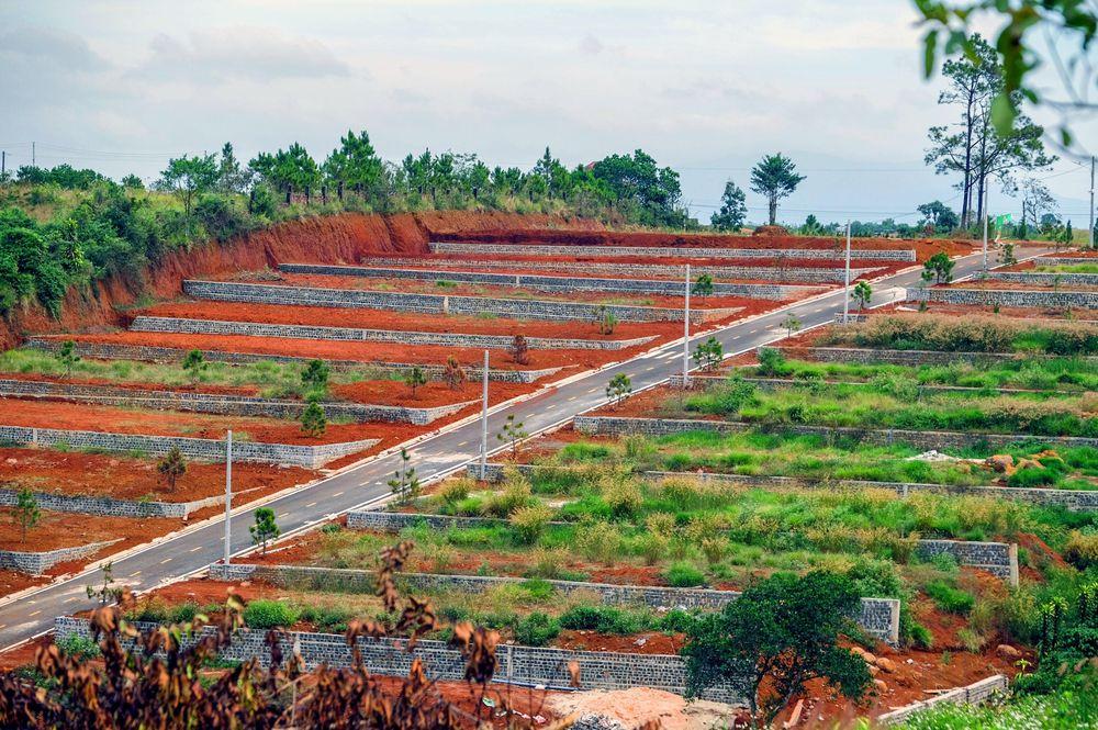 Đất Lâm Đồng