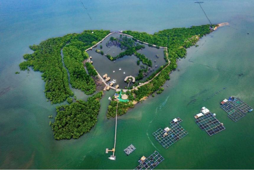 đảo nhìn từ trên cao