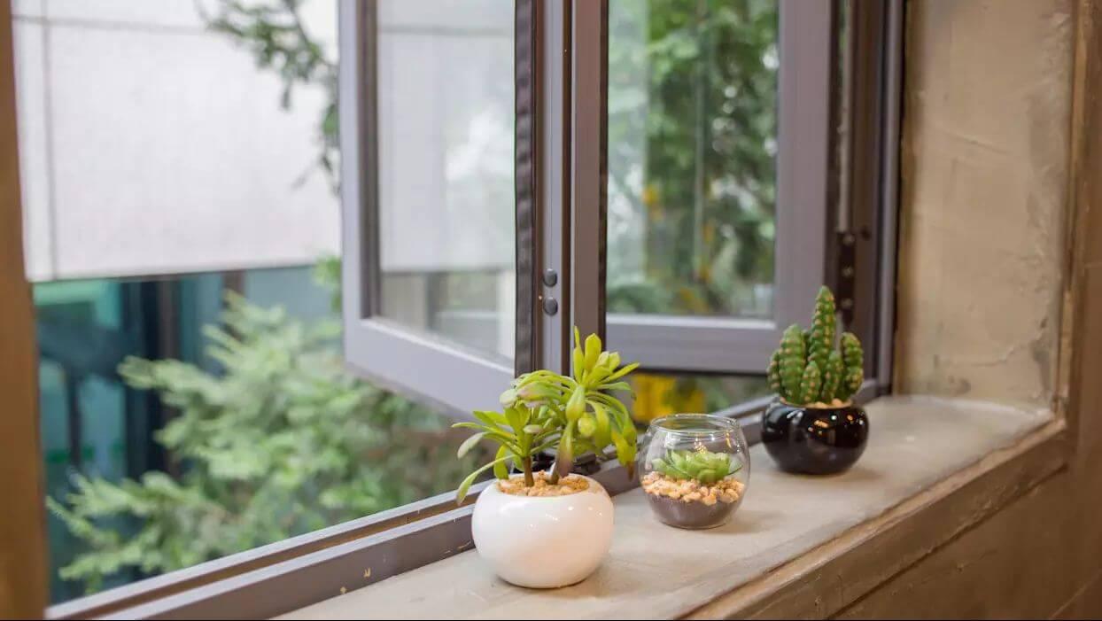 đặt vài chậu cây cảnh nhỏ bên cửa sổ