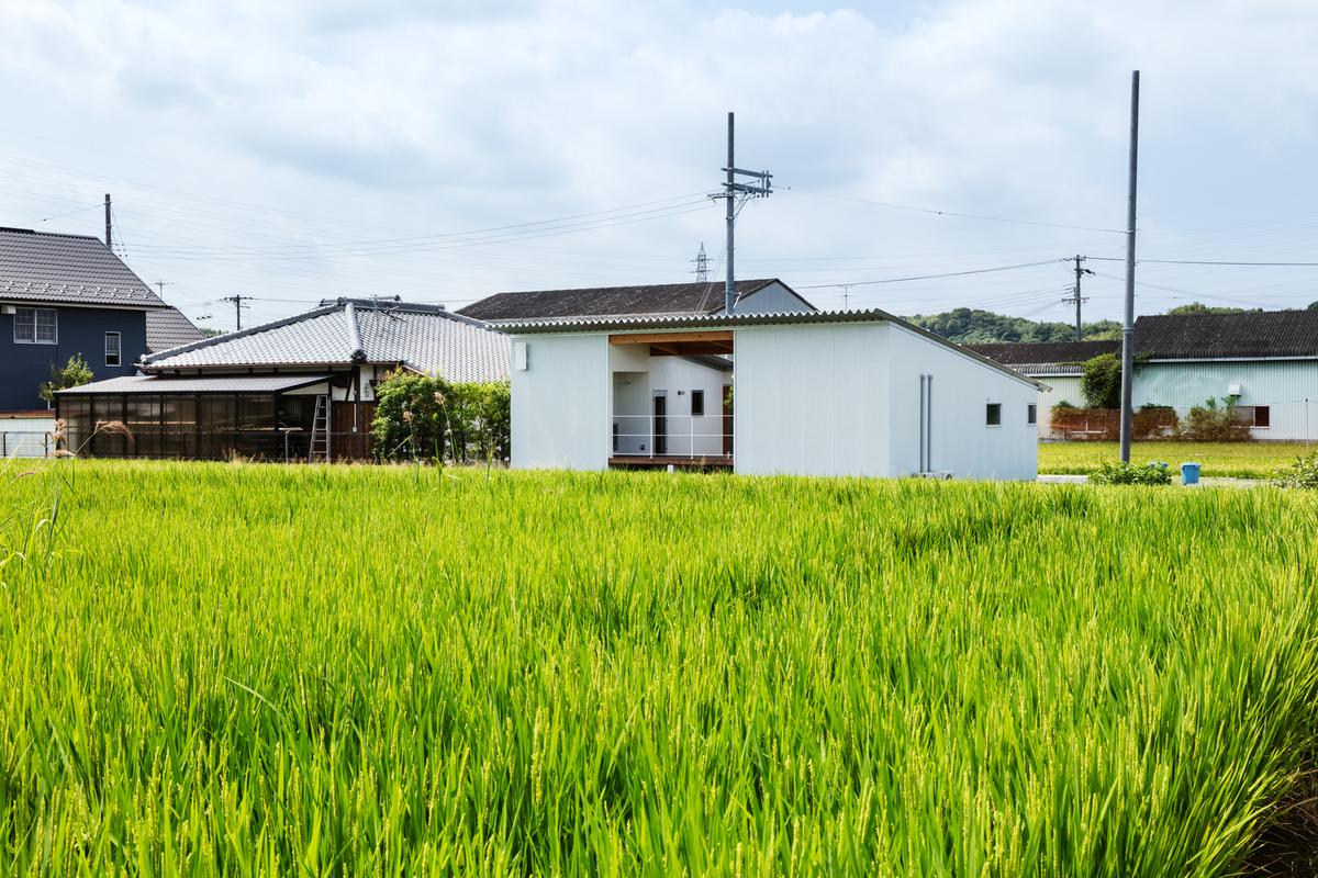 Người dân không được phép xây nhà ở trên đất nông nghiệp