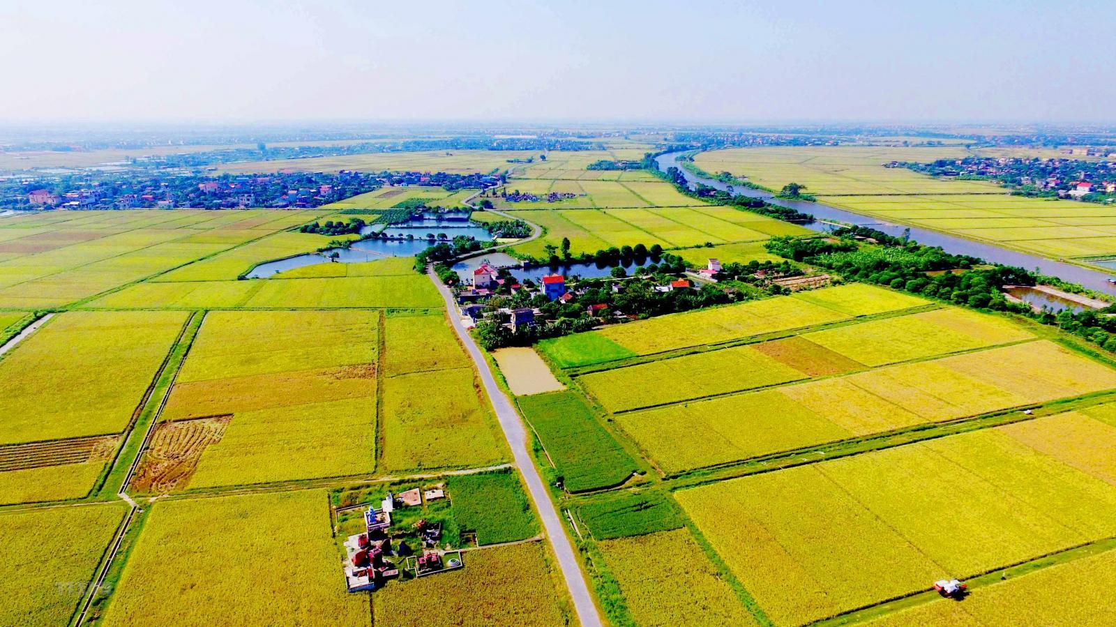 định nghĩa đất nông nghiệp là gì