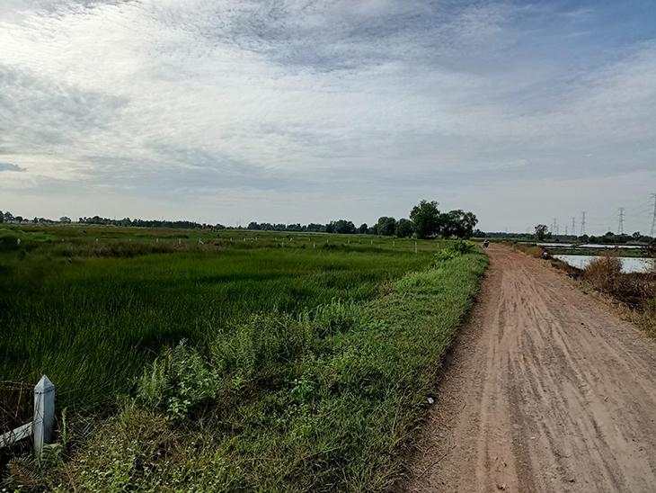 Sau khi hoàn thành chuyển đổi mục đích sử dụng đất BHK phải nộp một khoản thuế nhất định