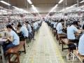 Cho thuê gấp 2 xưởng may tại Q12. DT 7200m2, 5000m2, LH 0933781138