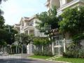 Bán nhanh căn biệt thự Phú Mỹ Hưng DT 8mx18.5m nhà đẹp 18.5 tỷ sổ hồng, call 0977771919