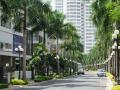 Bán gấp biệt thự Phú Mỹ Hưng quận 7 diện tích 126m2, giá 15 tỷ, sổ hồng, call 0977771919