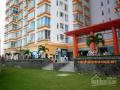Chính chủ cho thuê căn hộ cao cấp Terra Rosa 2 PN đầy đủ nội thất giá 6.5 tr/tháng