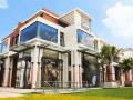 Cho thuê văn phòng + showroom + kho. Diện tích 900m2, giá 56.7 triệu