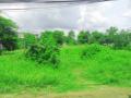 Cho thuê đất vườn mặt tiền đường 768, Vĩnh Cửu, giá rẻ, thuê lâu dài