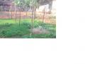 Bán đất 266,3m2, giá 5.8 tr/m2, Xóm Bồi Thọ, Thôn Bãi, Cao Viên, Thanh Oai, Hà Nội