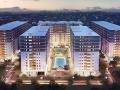 Cần bán gấp căn hộ Cityland Park Hills, đường Phan Văn Trị, Gò Vấp